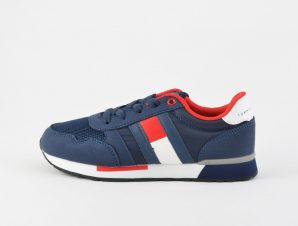 Tommy Jeans Low Cut Lace-Up Sneaker (9000039891_3024)